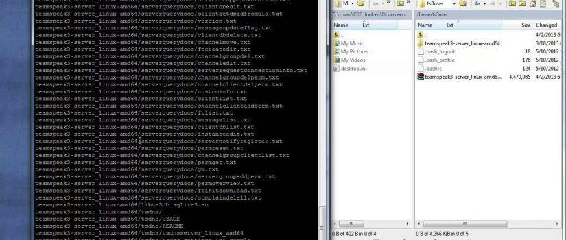 install teamspeak server debian